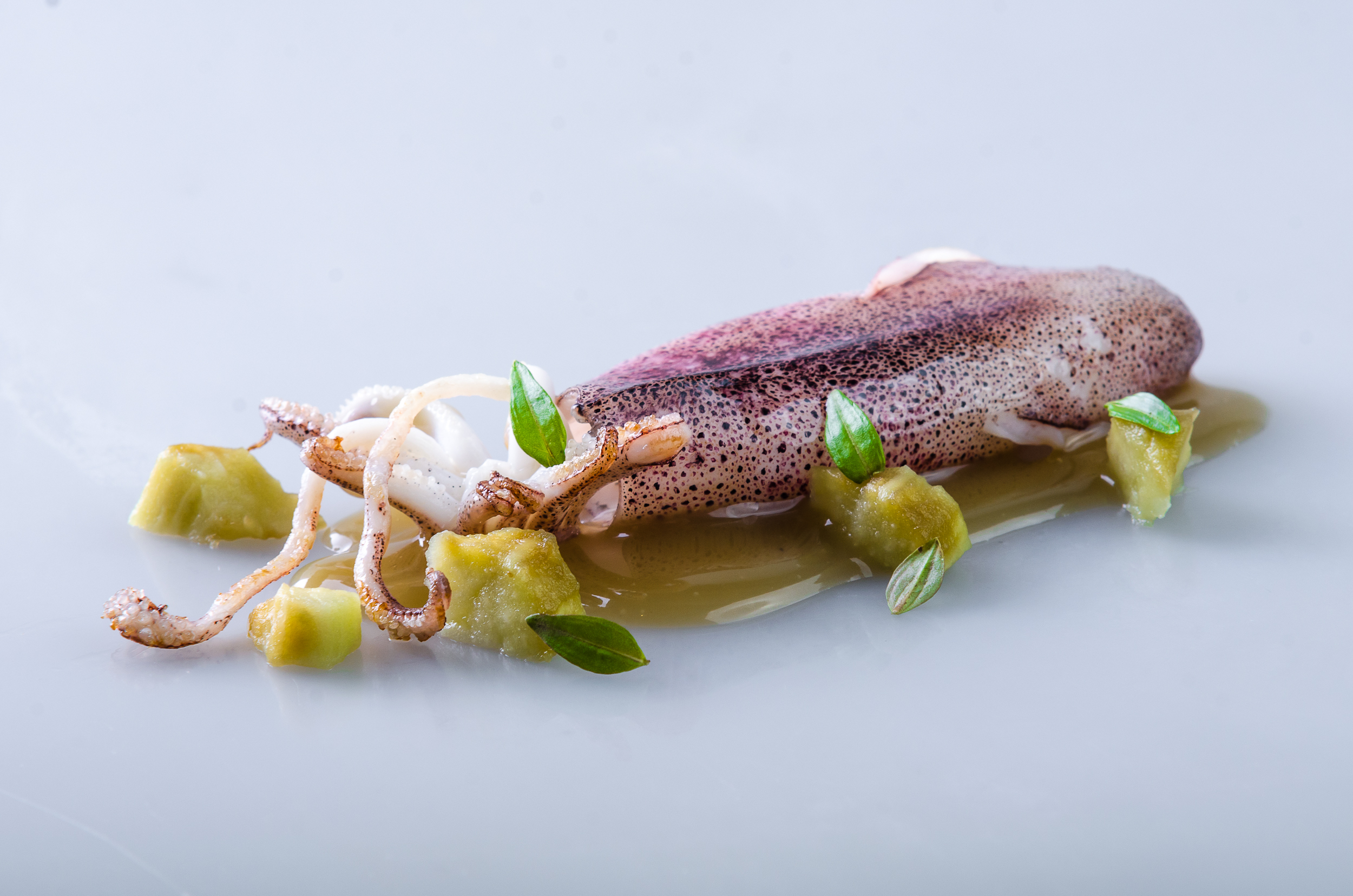 Aubergine: Squid and Eggplant by Chele Gonzalez (Gallery Vask)