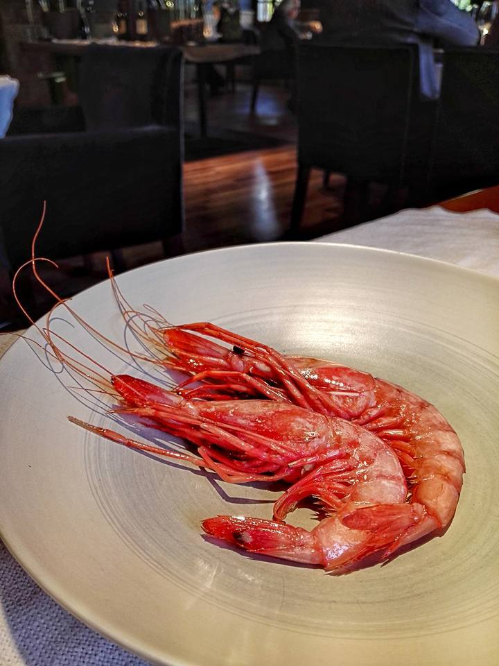 Prawns of Palamos (Photo by Cheryl Tiu)